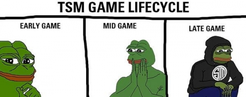 TSM Game Lifecycle pepes